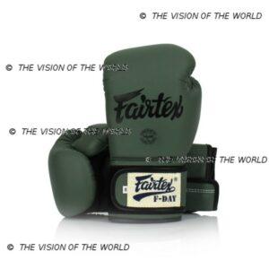 Gants de boxe Fairtex F-Day